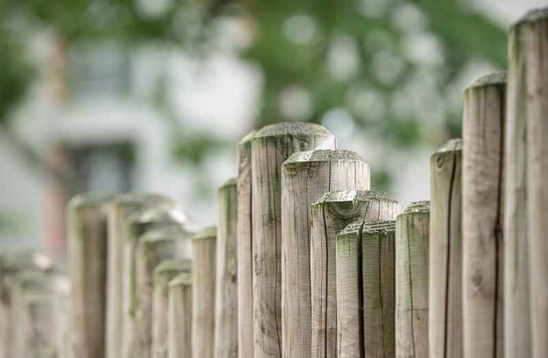 wood garden fence board